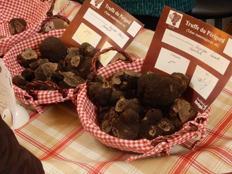 Marché contrôlé de producteurs locaux de truffes