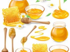 Journée abeille et pain d