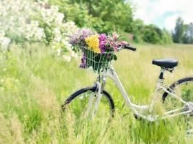 Sortie vélo  de l