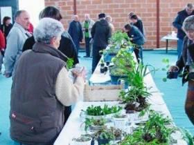 agenda Dordogne Bourse aux plantes