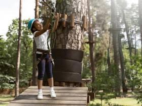 Eté actif - grimpe arbre