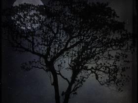 22ème randonnée au clair de lune