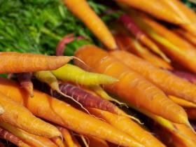 agenda Dordogne Marché alimentaire hebdomadaire