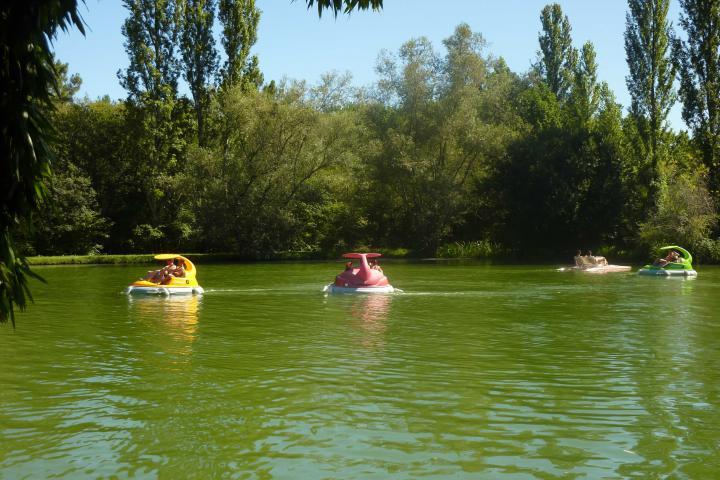 Aux étangs du Bos