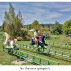 parc le bournat manèges chevaux