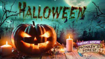 Monkey's Forest - Venez tremblez et frissonnez de peur pour cette Halloween 2020