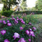 jardin Gîte de Cor