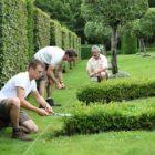 taille au cordeau Eyrignac et ses Jardins