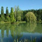 étang Gîte Bridoire du Domaine de l'Étang de Sandanet