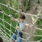 L'appel de la forêt accrobranche dordogne Perigord