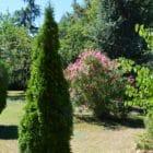 Gîte les Plantous de Severo