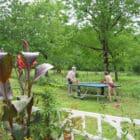 Les Gites Fleuris - La Wisteria