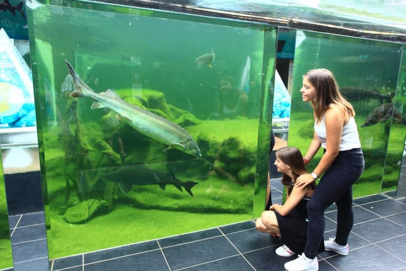 Aquarium Périgord noir