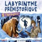 Labyrinthe Préhistorique Mirror Maze